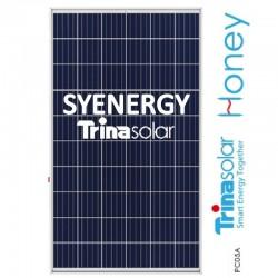 TRINA TSM-260 HONEY poly
